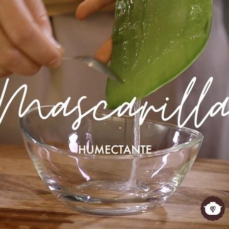 Mascarilla casera humectante - Plantas medicinales - Cómo preparar en casa