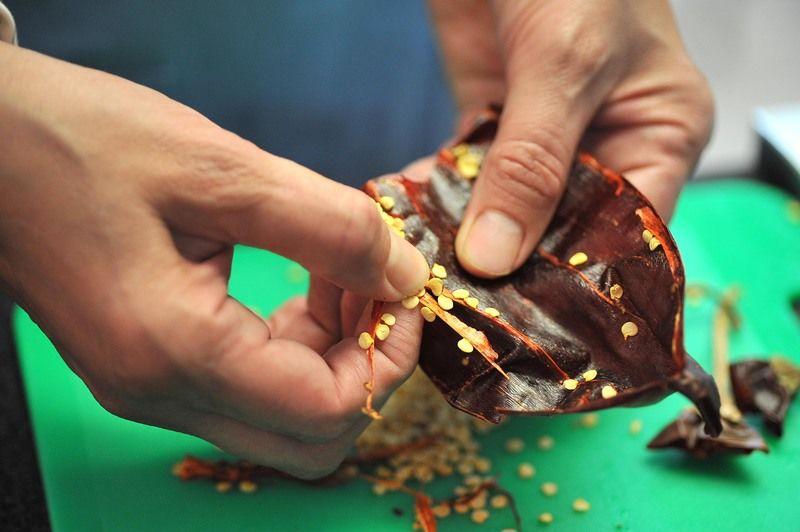 Abrir los chiles guajillos con una tijera, retirarles el rabo, las semillas y las venas.