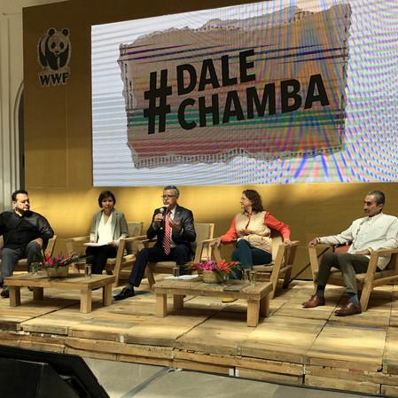 Dale Chamba